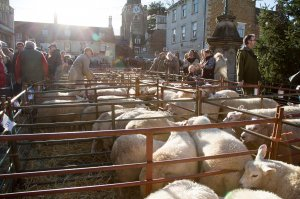 Uppingham Fatstock Show - ROAD CLOSURE